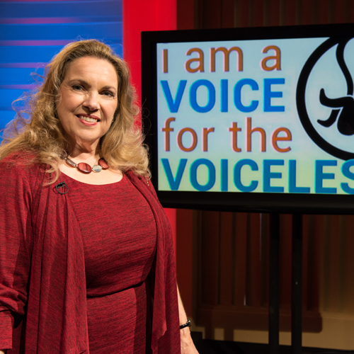 Learn How To Answer Pro-Abortion Advocates in EWTN's New Mini-Series
