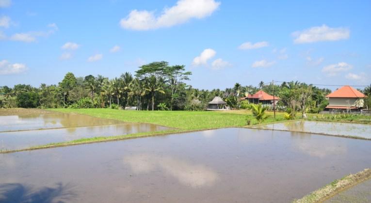 Indonesië stelt opening grenzen verder uit