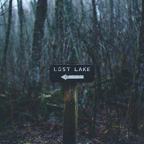 besos-cool-dark-forest-Favim.com-2725066