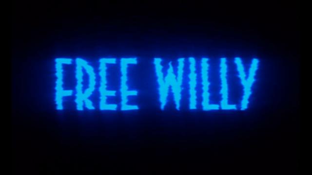 free-willy-tc