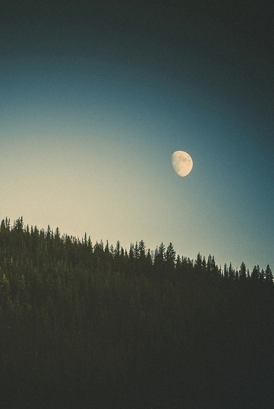 blue-forest-indie-moon-Favim.com-2680082