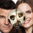 Bones Key Art prepares for series […]