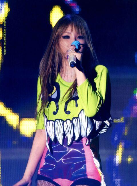 "2NE1's 1st Live Concert ""Nolza"" photobook"