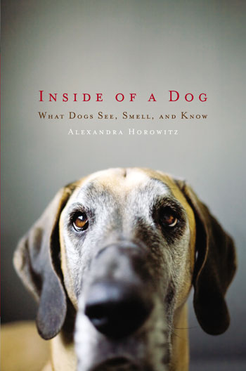 Review: Inside of a Dog