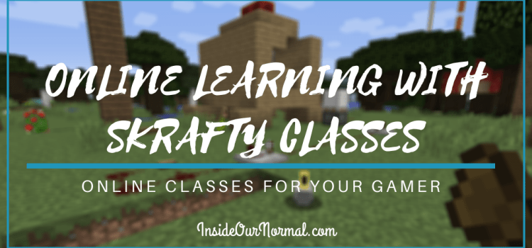 Online Learning with Skrafty Classes
