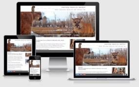 markelbroch.com website