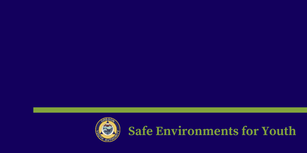 Safe Environments for Youth