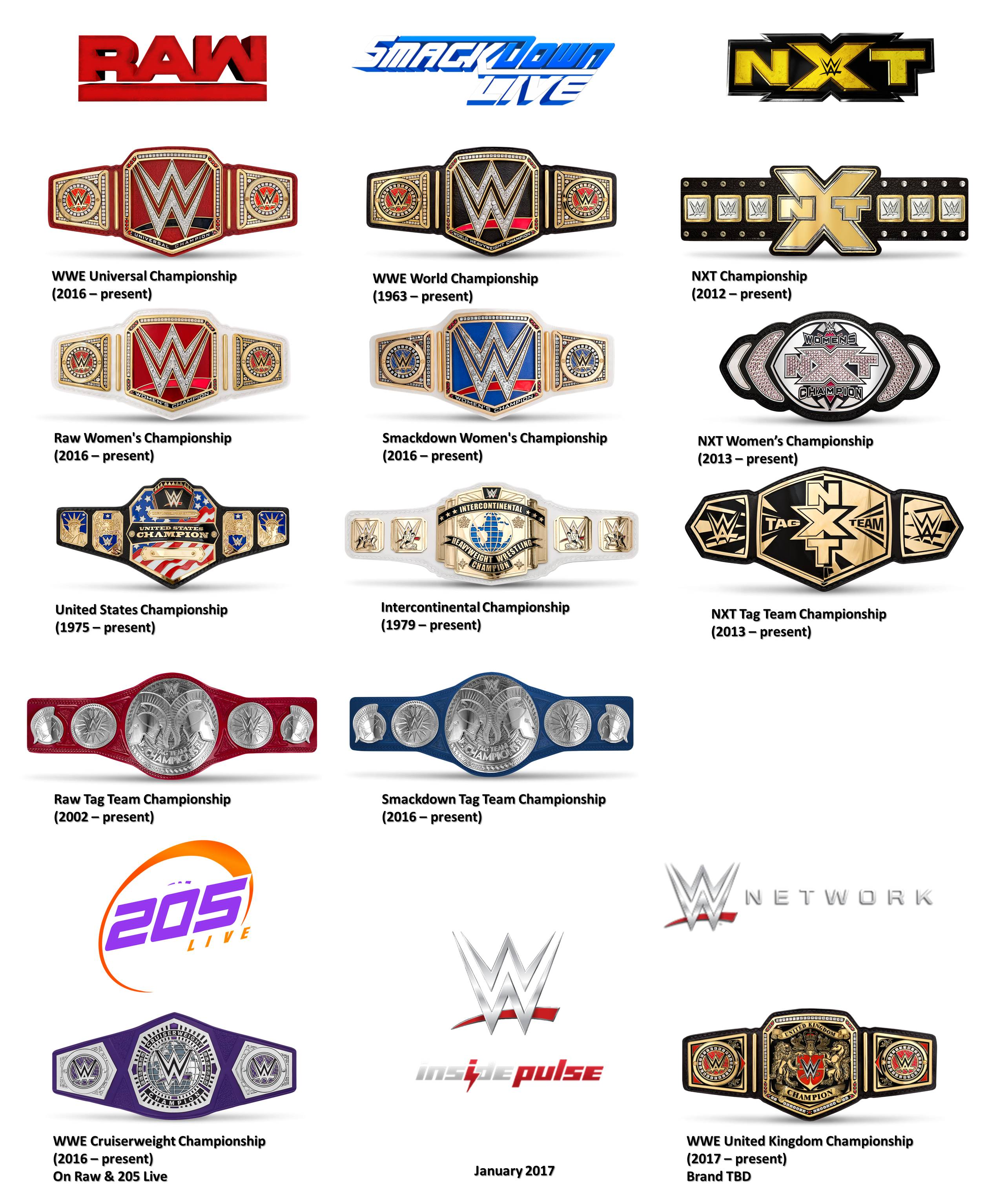 Image result for WWE Current Title Belts