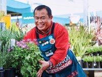 More than a sausage sizzle: What makes Bunnings so resilient?