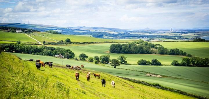 east_lothian_farmland