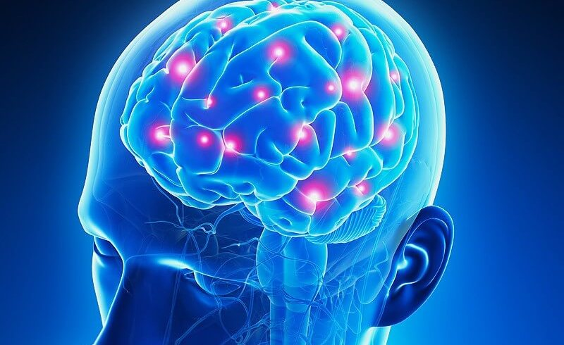 Combining Optical Brain Imaging and Physiological Signals to Study Cognitive Function