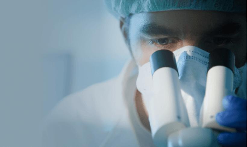Rodent Microsurgery and Hemodynamic Measurements Training Program