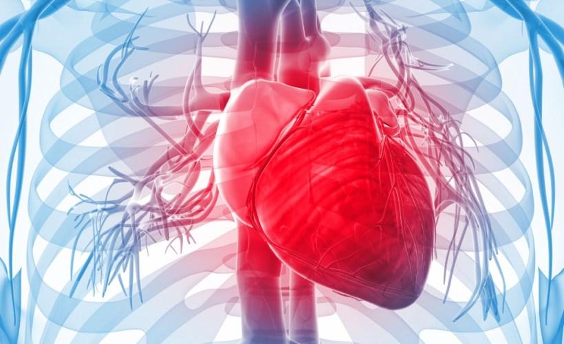 WEBINAR SERIES – Preclinical Cardiovascular Science 2018