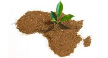 Africa potential