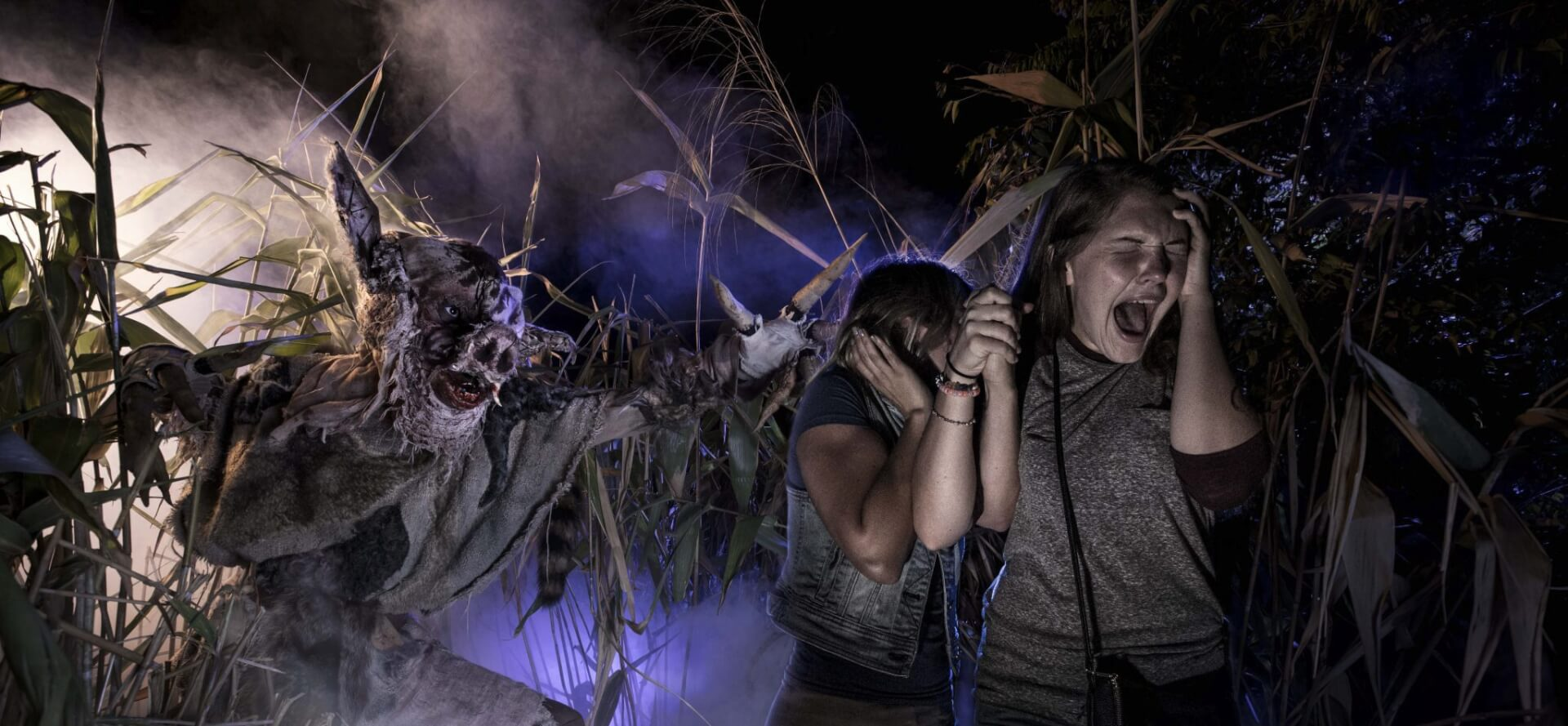 """buy a night, get 2nd night free"""" at halloween horror nights 2018 in"""