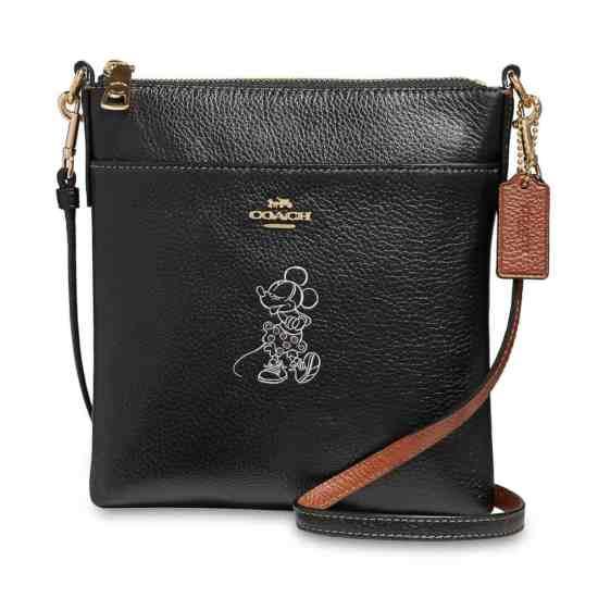 Disney Coach Bag