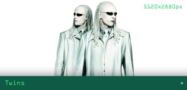 03-Artikel_Bilder_VORSCHAU_640x310_Twins