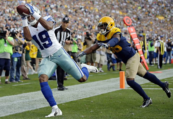 Brice Butler, Packers