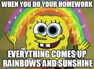 homework sunshine