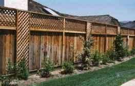 37 DIY Backyard Privacy Fence Design Ideas on A Budget