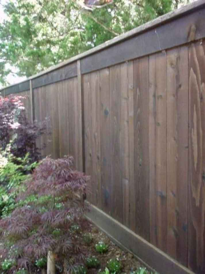 48 DIY Backyard Privacy Fence Design Ideas on A Budget