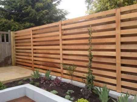 52 DIY Backyard Privacy Fence Design Ideas on A Budget