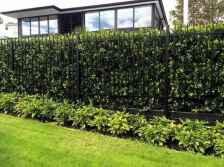 60 DIY Backyard Privacy Fence Design Ideas on A Budget