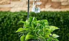 38 Inspiring Faucet Garden Decor for Front and Backyard Ideas