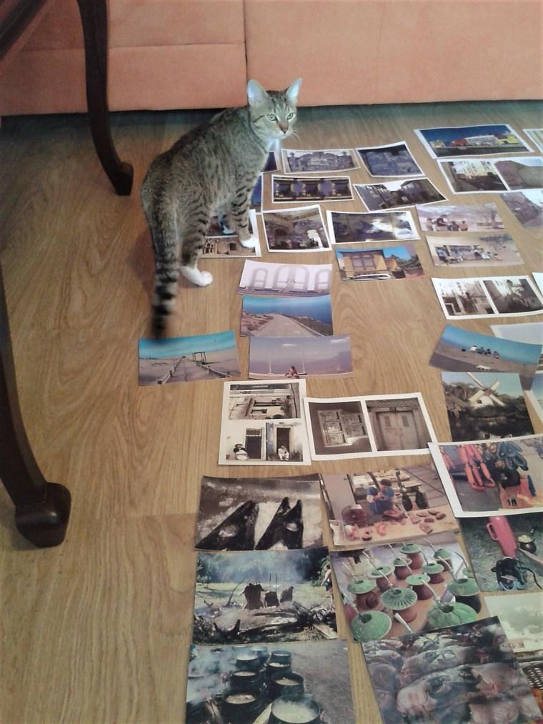 Tycjusz.cat .exhibition