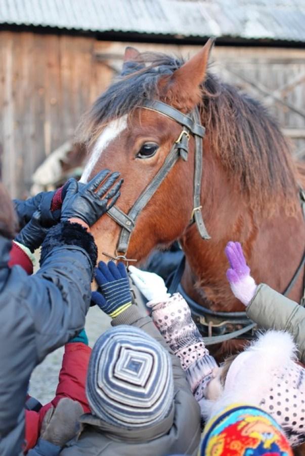 vaikai glosto arkli 1