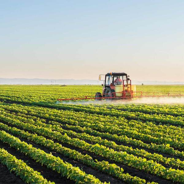 Work beyond 2020: the future of agriculture