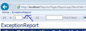 SSRS properties report native mode