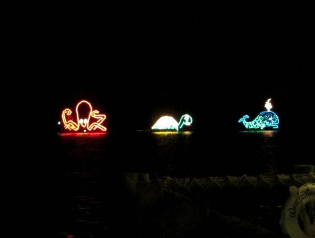 Electric Water Pageant from Fort Wilderness