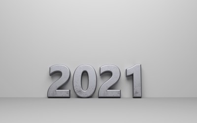 2021 Risks & Opportunities