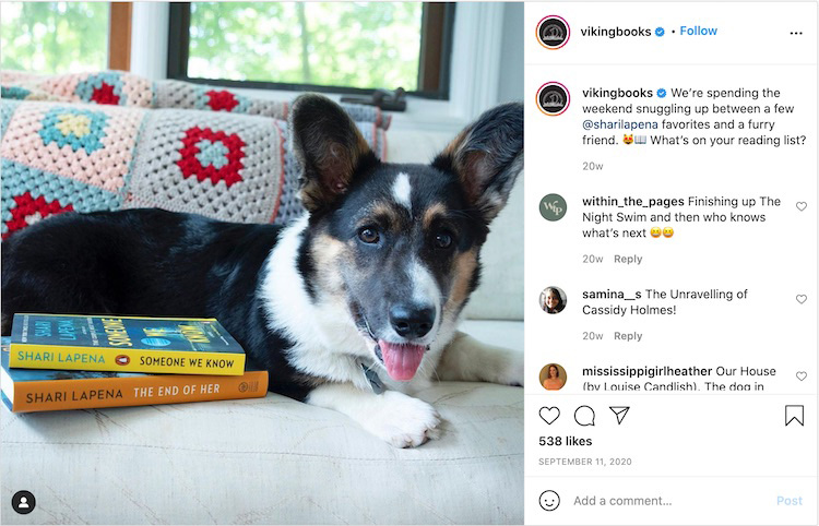 Animal Bookstagram Publisher