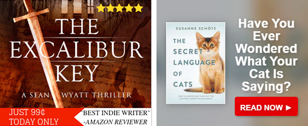 similar authors sean wyatt susanne schotz bookbub ads target readers