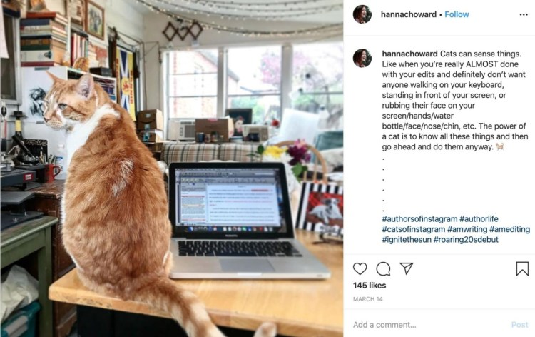 Author Pet Instagram Picture