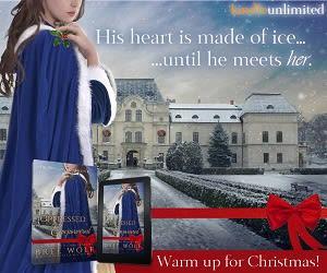 Holiday Bookbub Ad 14