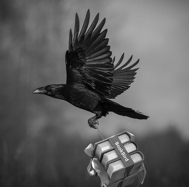 BookBird Ravens