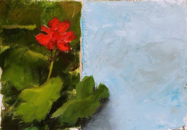 Oil painting of a red geranium surrounded by green leaves beside a blue stucco wall in San Antonio Huista, Guatemala.