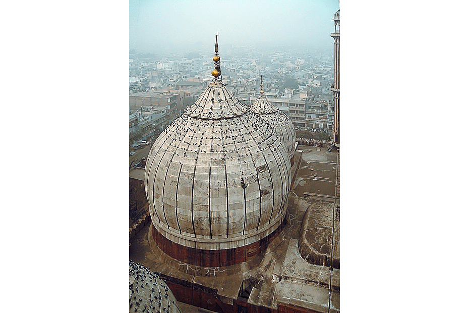 Pigeons on domes of Jama Masjid, Delhi, India with the surrounding neighborhood in the foggy background.