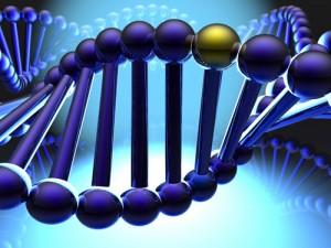 alcoholic genes