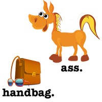 the difference between an ass and a handbag