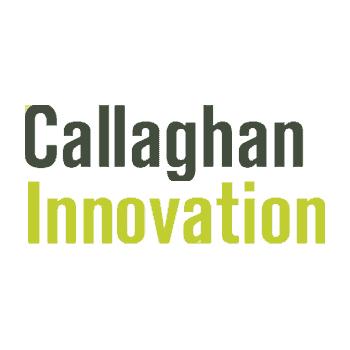 Business Innovation Advisor