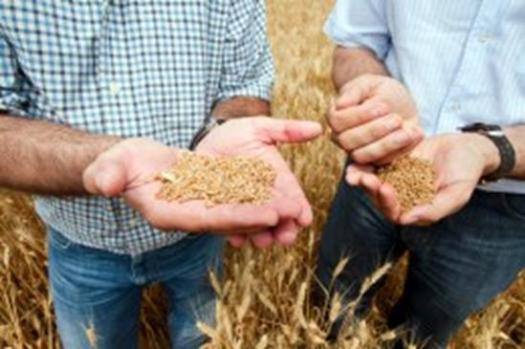 E-technology in the Aid of the Farmers