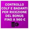 colf-badanti-bonus-80-euro-3