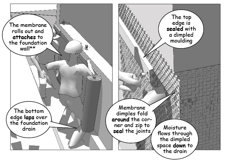 Framing Phase – Insitebuilders
