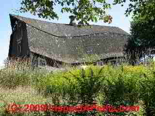 Collapsing barn (C) Daniel Friedman