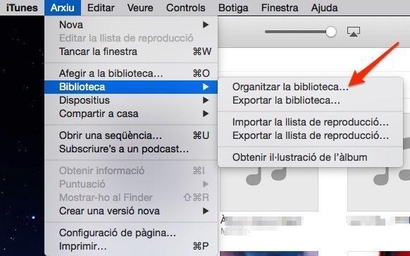 Menú biblioteca iTunes