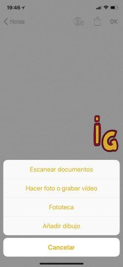 Escanear códigos QR y documentos _ documentos